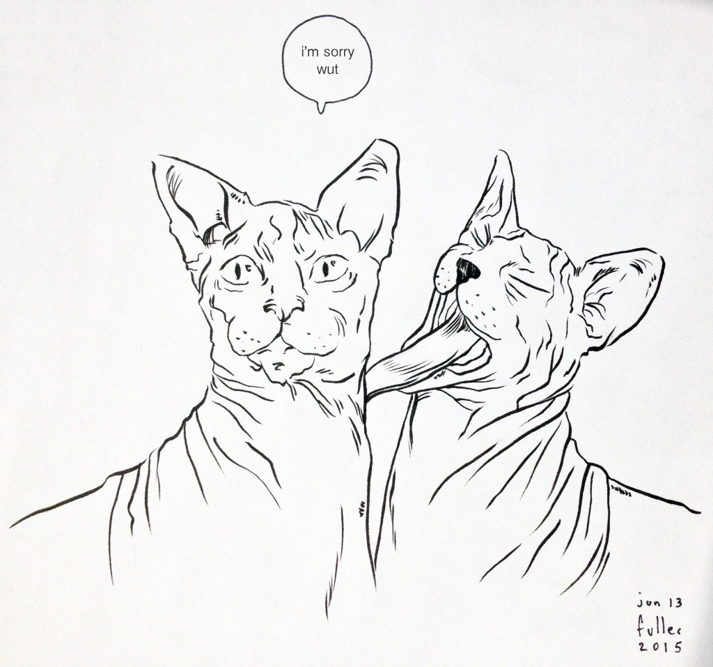 150613a Hairless Cats
